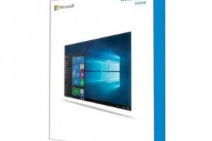 MS WINDOWS 10 HOME 64BIT TR (OEM) KW9-00119